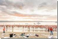 В Австралии нудисты в шапочках устроили массовый заплыв в честь солнцестояния