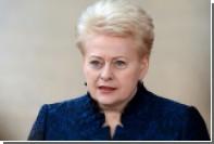 Президент Литвы назвала главной угрозой существование России и Белоруссии