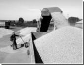 Рекордный экспорт зерна не принесет России рекордного дохода