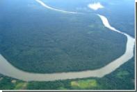 Бассейну Амазонки предрекли скорое уничтожение