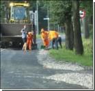 В Польше дорогу засыпало тоннами рыбы. ФОТО