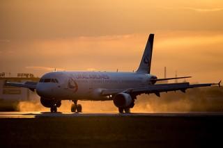 Самолет получил повреждения при столкновении со стаей птиц в Симферополе