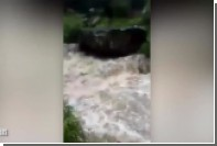 Спасение троих туристов из реки в Индии сняли на видео