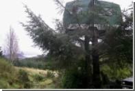 Airbnb предложил арендовать фургон на дереве