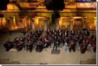 Собака присоединилась к Венскому камерному оркестру на концерте в Турции