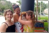 В США преодолевшего 320 километров пса вернули хозяевам