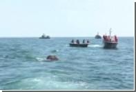 Военные моряки Шри-Ланки спасли двух уплывших в море слонов