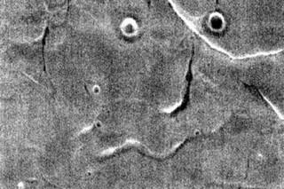НАСА нашло новое «лицо» на Марсе