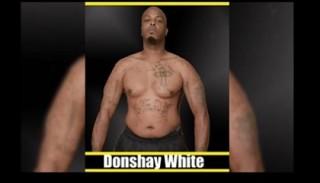 Боец MMA умер после боя