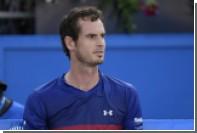 Британец откусил отчиму кусок уха из-за спора о национальности теннисиста Маррея