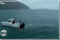 Появилась видеозапись заплыва Майкла Фелпса против белой акулы
