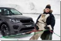 Land Rover погонялся с собачьей упряжкой