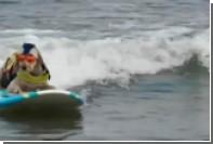 В Калифорнии прошел чемпионат по серфингу среди собак