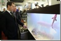 Медведев поручил наладить поставки дальневосточной рыбы по всей России