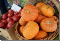В Россию с 1 сентября разрешат ввозить турецкие кабачки и тыквы