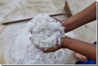 Названа главная опасность злоупотребления солью