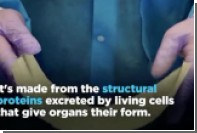 Создание бумаги из внутренних органов показали на видео