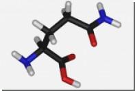 Популярная пищевая добавка названа регулятором генетической программы организма