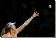 Организаторы US Open объяснили решение выдать Шараповой wild card