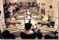 Музей Гуггенхайма раскритиковали за видео стравленных питбулей