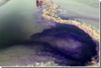 Озеро в Астраханской области покрасили в фиолетовый ради свадебной фотосессии