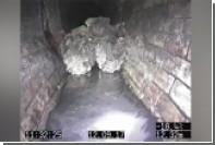 Фрагмент 130-тонного сгустка жира из лондонской канализации купит музей