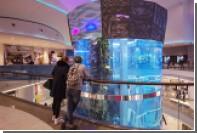Число посетителей московских ТЦ выросло впервые за три года