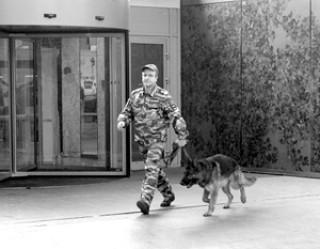 «Телефонный терроризм – это спланированная акция спецслужб Украины»