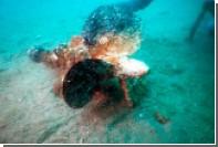 У берегов Японии обнаружили обломки катера камикадзе времен Второй мировой