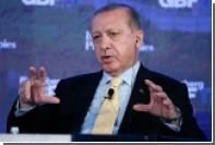 Эрдоган раскрыл совместные планы Москвы и Анкары в отношении сирийского Идлиба
