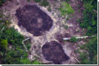 Бразильские золотодобытчики похвастались убийством 10 аборигенов Амазонии