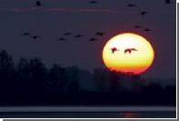 На Солнце произошел мощнейший взрыв