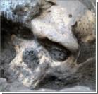 Найденный в Грузии древнейший череп может изменить представление о предках людей