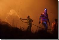 Из-за лесных пожаров в Португалии погибли 27 человек