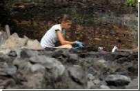 Найденный под Новгородом мост закопают из-за нехватки денег на его реставрацию