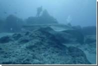 Гигантского морского кота с ядовитым шипом сняли на видео