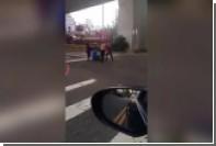 Тайваньская домохозяйка отбила мужа от полуголого арендодателя с мачете