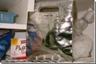 Helmut Lang выпустил женскую сумку-морозильник за 320 долларов