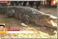Детей спасли через дыру в крыше от забравшегося в дом четырехметрового крокодила