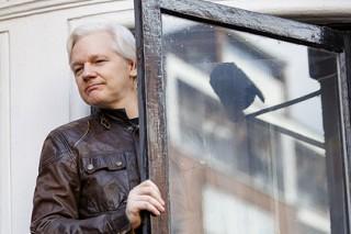 Раскрыта переписка сына Трампа с WikiLeaks