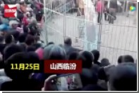 В Китае тигр вырвался из клетки и набросился на людей