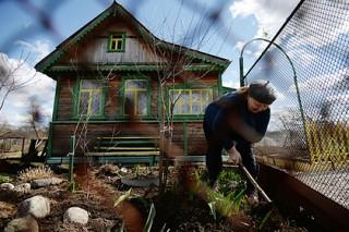 Дачникам и огородникам упростили доступ к электросетям