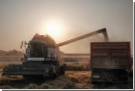 Российские земледельцы пожаловались на слишком хороший урожай