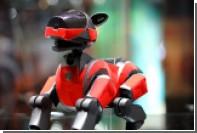 Sony пообещала вернуть японцам собак-роботов Aibo