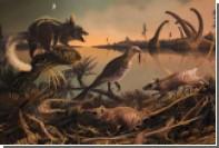 Обнаружен старейший предок человека