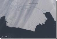 Антарктические ледники ускорили таяние