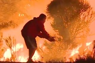 Американец героически ринулся в огонь ради кролика