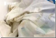 Китайцы попытались пронести сотни тараканов в самолет