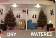 За секунды спалившую дом новогоднюю елку сняли на видео