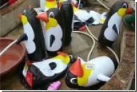 Китайский зоопарк прокололся на надувных пингвинах